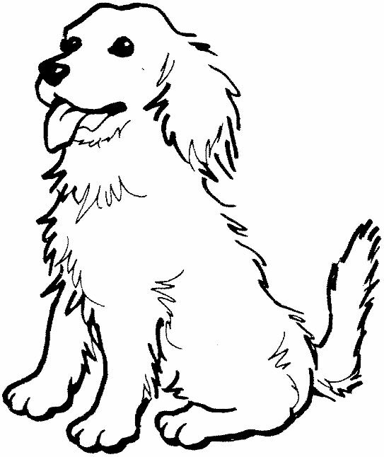 Coloring Page Of A Golden Retriever KidPrintablescom Coloring Pages